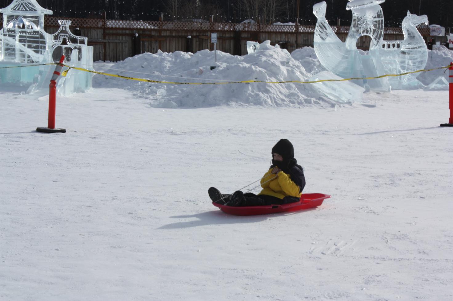 Sledding at the Ice Festival